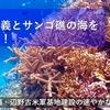 No.657(2019.4.17)民主主義とサンゴ礁の海を守ろう! 沖縄・辺野古米軍基地建設の速やかな中止を