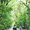 愛知県に突入。歩行距離300㎞を突破!