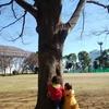 おやこ組 ぱちぱち 有明テニスの森公園