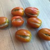 家庭菜園~ミニトマト 【Vol.3 : トマトが割れた!】