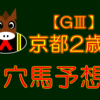 【GⅢ】京都2歳S 結果 回顧