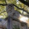21年1月の八坂神社のお話。