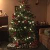今更ですがクリスマスツリー公開