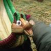 【ペルー旅行6日目】チチカカ湖ツアーに参加しました