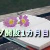 ブログ開設1カ月目報告!