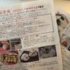 新宿高島屋『京都航空便』レポ。京都の有名和菓子を東京で!行列や混雑の状況まとめ。