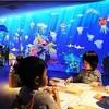 《お出かけ》11月17日から12月17日まで【チームラボアイランドー学ぶ!未来の遊園地ーin神戸港】が開催されます☆のびのびパスポートも使えます‼︎