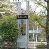 間に合いましたぁ~、湯島「つる瀬」さんの季節限定「桜大福」