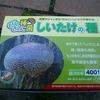 シイタケの種ゴマ仕込んでからもうじき丸2年経つので、そこでちょっとした工夫を・・・
