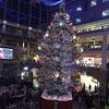 クリスマスツリーの下で〜お次は、ゴルマでね!