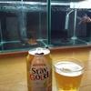 乾杯金魚。