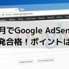 2ヶ月でGoogle AdSenseに一発合格!ポイントは?