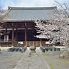 立本寺のしだれ桜が満開、見頃だったので撮影【2019年】
