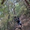 11月8日 中山ダブルピークス廃線トレイル!オリジナルコース21kmを走ってみた(*´꒳`*)