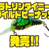 【DAIWA】ザリガニをイメージして使えるクランクベイト「ラトリンタイニーワイルドピーナッツ」発売!