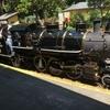 蒸気機関車とメリーゴーランドに乗りにロスガトスへ!