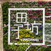 【上海旅行 ep.14】上海市内観光で定番の田子坊と外灘へ行ってきた【2019.4.2】