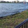 な~に~!?『河川増水のため』コート使用中止だとな!?