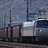 第438列車 「 丸鮫の居る日常・EF66 105号機を狙う 」