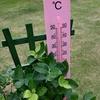 121   園庭暑いよ、気をつけて!