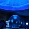 クラゲファンはもちろん、深海ファンも。ナイトアクアリウム@新江ノ島水族館
