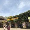GWレポ〜触れ合える動植物園、バイオパークに行ってきました〜