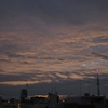 🌆先日の朝焼け🌝