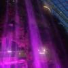 シンガポール2016その③:ガーデンズ・バイ・ザ・ベイ クラウド・フォレスト