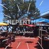 Big Surの絶景レストランNepenthe