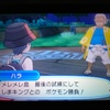 【ポケモンウルトラサン・ウルトラムーン】しまキング「ハラ」の攻略!【メレメレ島最後の試練】