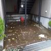 【謹んで台風19号、および大雨災害被害のお見舞いを申し上げます…】#141