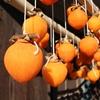 【あんぽ柿・つるし柿ってどんな柿?冬におすすめの「干し柿」で風邪予防・二日酔いにも】