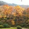 五木村と五家荘へ行きました