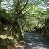 京都 高雄の清滝川と、ウジウジ峠