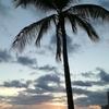 暮らすように旅するハワイ