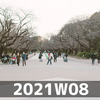 週報 2021W08