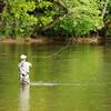 釣りバカ日誌の2代目スーさんが西田敏行?!新生『釣りバカ日誌』に期待大です。