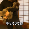 2021.6.13 【感づくワンコ達】 Uno1ワンチャンネル宇野樹より