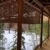 【群馬】1日目-2 水上温泉「別亭やえ野」は4室限定のお宿