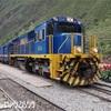 【Re:旅57日目】いざ、出発!!早朝のPeru Railでクスコからマチュピチュ村へ移動!到着後まさかの事態が発覚・・・。