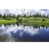 【日本百名山】夏の八幡平トレッキング:池塘と湿原が広がるパラダイス