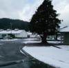 山間部はかなり雪だった。