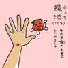 三焦経(TE)4   陽池(ようち)