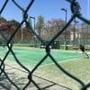 平成29年度 春季硬式テニス大会に出場してきた