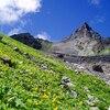 祝・山の日!一度は登ってみたい山野草を楽しめる日本の山9選
