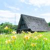 やっぱり花は少なめ:太閤山ランド