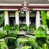 スコータイホテルのセラドンで出会うエレガントなタイ料理メニュー@タイ, バンコク/PR