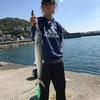 海釣りを始めたキッカケ。