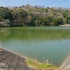 蛭沢奥池(静岡県浜北)