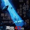 もうサメを近くで見たいなんて〜言わないよ絶対〜♪『海底47m』